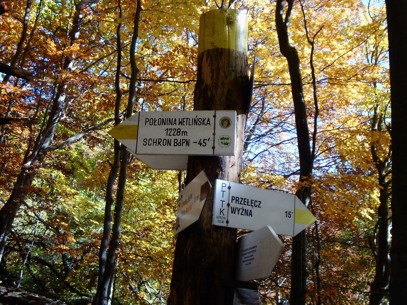Super Nordic Walking w Bieszczadach